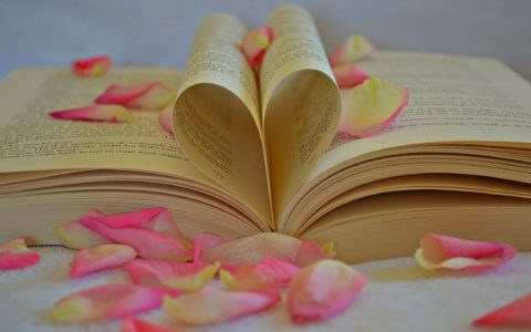 livre petales de roses